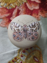 Handpainted Wooden Cupboard Door Knob Butterfly Moth